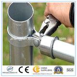 tubo de acero galvanizado sumergido caliente de 0.8mm-18m m para el poste de la cerca