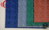 Pavimentazione di gomma moneta/fissato