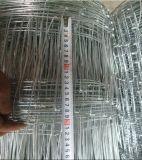 검술하는 4FT 경첩 관절 필드 담 또는 농장 담 철사 또는 사슴 또는 가축 담
