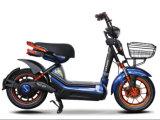 大きい積載量の600W強い力の電気スクーター