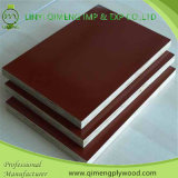 1220X2440X18mm Poplar Core Construction Plywood avec Waterproof Glue