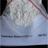 99% Reinheit-roher Steroid Hormon-PuderNandrolone Decanoate CAS 360-70-3