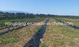 農業の庭のための新しい編まれたPEの沈泥の塀