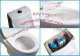 El baldeo Cerrar-Juntó diseño sanitario del cuarto de baño del Wc de las mercancías del tocador