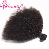 Qualidade superior Virgin Indian Afro Kinky Curly Human Hair Weave para barato