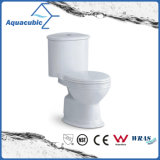 Washdown Dual Flush Two Piece Ceramic Toilet (ACT5222)