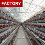 un tipo jaula de la capa del pollo con el sistema automático del bebedor