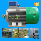 수력 발전을%s 100rpm 400V 50Hz 영구 자석 발전기