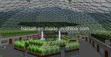 Landwirtschafts-Nest-Gewächshaus mit PC Blatt-Bedeckung