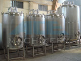 Carbon Steel (ACE-CG-X1)著硫黄のAcid Storage Tank Made