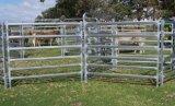 Гальванизированное оборудование поголовья загородки фермы 6 панелей скотин рельсов