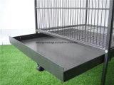 Heißer Verkaufs-Qualitäts-Papageien-Rahmen-Haustier-Rahmen