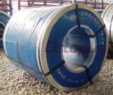 Brique enduite PPGI de trapèze de couleur de qualité de Hight dans la bobine