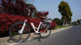 اشتريت [لوو بريس] [هيغقوليتي] [250و] إمرأة كهربائيّة مدينة درّاجة في الصين