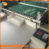 Fangtai Schaumgummi der doppelten Schicht-EPE u. Luftblase-Film-Beutel, der Maschine herstellt