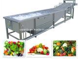 Hete Verkoop! ! ! De populaire Machine van de Wasmachine van Vegetable&Fruit van de Luchtbel
