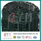 PVC上塗を施してあるオランダ金網のヨーロッパの農場の塀のオランダの鉄条網