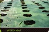 Textiles de couvre-tapis/horticulture du géotextile tissés par polypropylène Manufacturer/PP Weed/revêtement d'agriculture