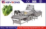 Lavadora de múltiples funciones automática de la arandela de la legumbre de fruta de la burbuja de aire
