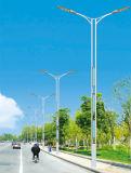 公共の照明のための太陽電池パネルが付いている街灯