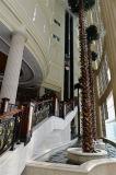 Ascenseur guidé efficace stable de DSK pour l'hôtel