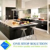 Placage noir et compartiment blanc de cuisine de meubles de Module de fini de laque (ZY 1167)