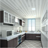 PVC decorativo Wall y Ceiling Panels de Material Simple Design