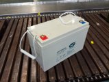 la valvola 12V110ah ha regolato la batteria profonda del gel del ciclo