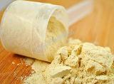 Goldaktie Sports Nahrung-Protein-Kollagen-Puder GMP-Fabrik