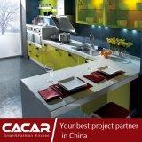 ばねの自然な水晶パネルの食器棚(CA09-11)の生命バンク