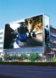 Visualización de LED de la pared del edificio del alto brillo del proyecto del gobierno de P10fs SMD Skymax