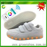 Nuovi pattini chiari freddi controllati del fornitore di pattini di APP LED
