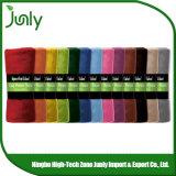 Cobertores mornos baratos gerais de alta qualidade de Microfiber da forma popular