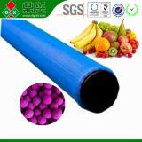 フルーツのためのエチレンの吸収物パケット中国製