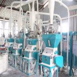 30t / 24h maïs moulin à farine de haute qualité à faible coût