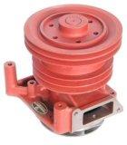 Agua Pump para Wd615/JAC, Jmc, Yuejin, Foton, Forland etc