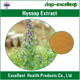 Hyssop (officinalis), extrato do Hyssopus do Hyssop, extrato de Officinalis do Hyssopus