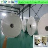 Eco-Freindly PET überzogenes Papier für Papiercup und Papierkasten