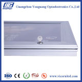 QUENTE: Diodo emissor de luz impermeável ao ar livre Box-YGW42 claro