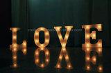 Пластичный свет письма СИД подарка корабля украшения СИД
