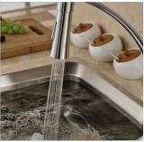 Singoli colpetti di miscelatore montati piattaforma della cucina del tubo flessibile del nero della maniglia con un ugello dei due spruzzatori
