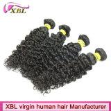 カーリーヘアーの自然で黒い人間のインドのRemyの毛