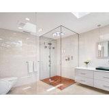 Bride en verre en verre de pêche à la traîne d'acier inoxydable de porte de douche (B01-90B)