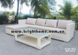 Muebles al aire libre del jardín agradable de la rota