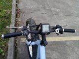 Bicicleta elétrica do pneumático gordo com bateria de lítio 250W 36V