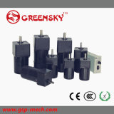 GS 90W Electrical AC Gear Motor with Terminal Box