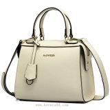 Handbag 2016 neuer Art-Dame (6091)