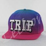 Chapeaux neufs de chapeaux de sport d'ère de mode de broderie de Snapback de sublimation