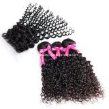 Het in het groot Stuk van het Haar van de Producten van het Menselijke Haar van 100% Maagdelijke met de Bundels van het Haar (fdx-yy-KBL)