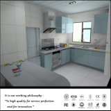 Whole Set Kitchen Cabinets & Cupboard com UV